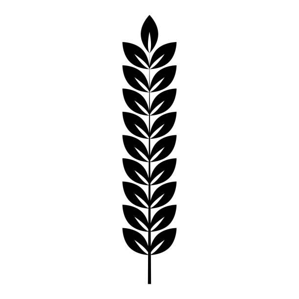 spikelet von weizen-pflanzen-zweig symbol schwarze farbe vektorillustration flachen stil bild - zeichensetzung stock-grafiken, -clipart, -cartoons und -symbole