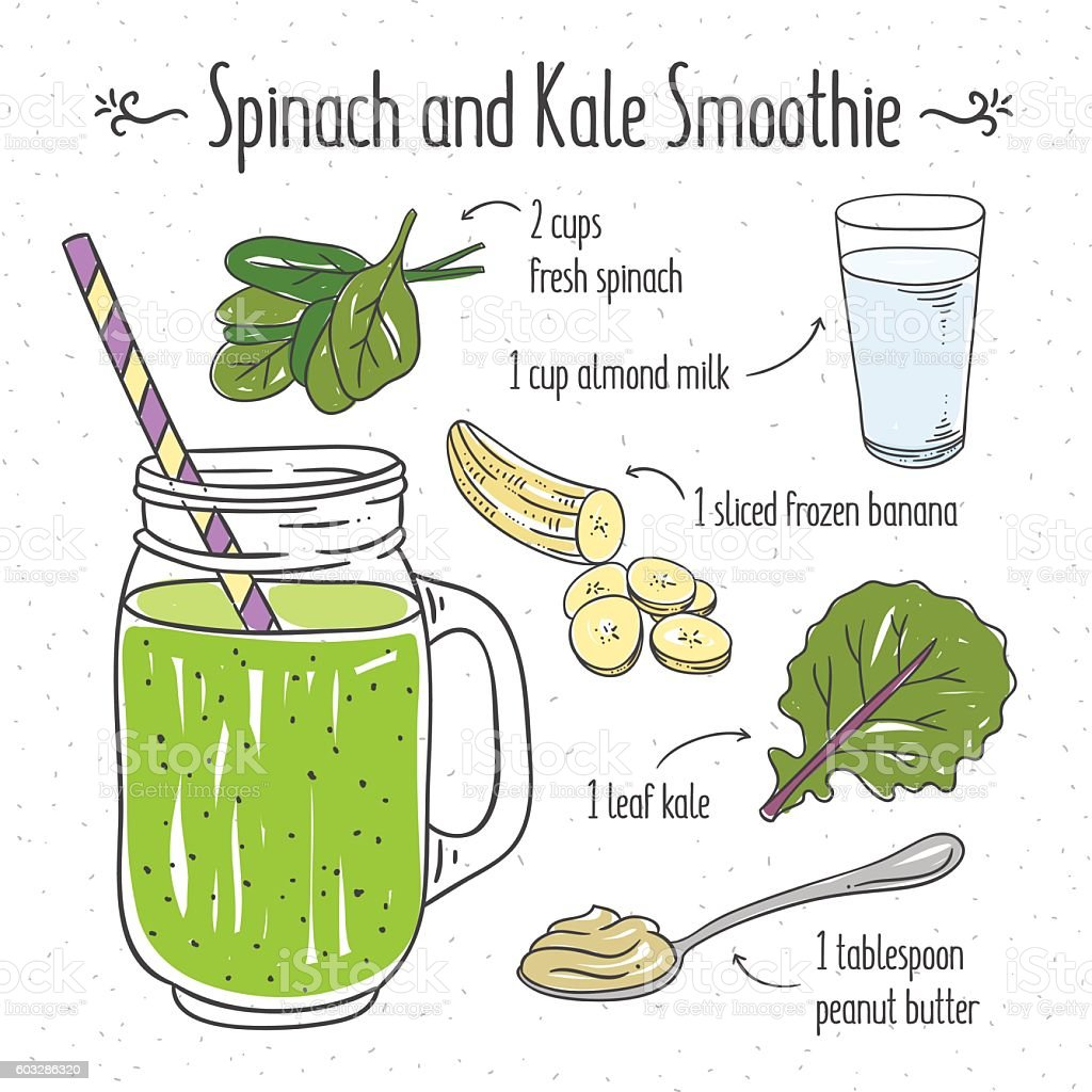 Spinach and kale smoothie. Smoothie recipe cooking illustration vector art illustration