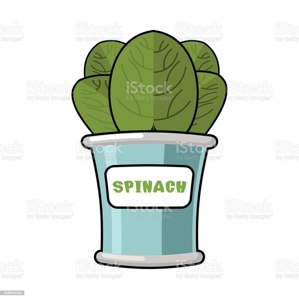 Spinach in tin. Useful Herbs. Green lettuce leaves. Dietary vege vector art illustration