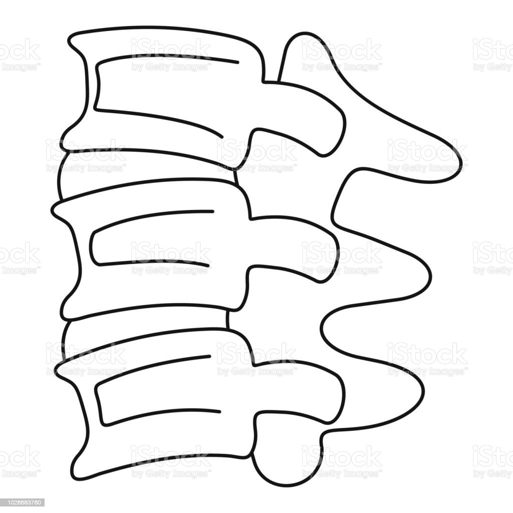 Spinal Column Discs Icon Outline Style Stock Vector Art More