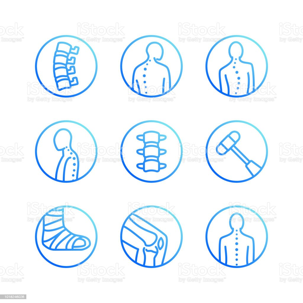 Colonne vertébrale, épine dorsale plate icônes de ligne. Clinique d'orthopédie, réadaptation médicale, retour de traumatisme, fracture, scoliose de correction de posture. Soins de santé hôpital cercle signes, logo vectoriel - Illustration vectorielle