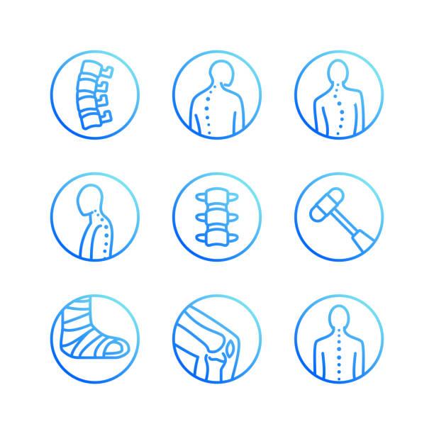 illustrations, cliparts, dessins animés et icônes de colonne vertébrale, épine dorsale plate icônes de ligne. clinique d'orthopédie, réadaptation médicale, retour de traumatisme, fracture, scoliose de correction de posture. soins de santé hôpital cercle signes, logo vectoriel - chiropracteur