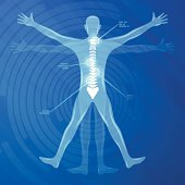 Spine Illustration