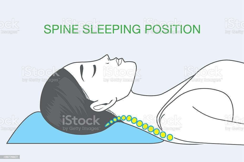 Spine sleeping position vector art illustration