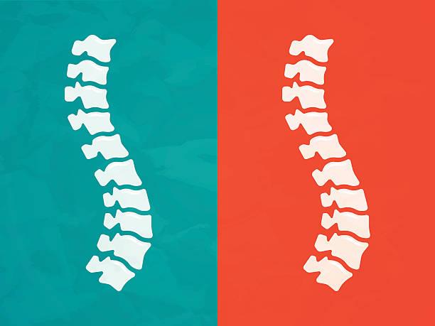 wirbelsäule - chiropraktiker stock-grafiken, -clipart, -cartoons und -symbole