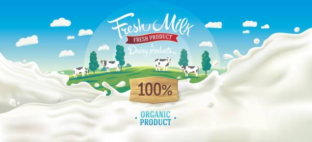 illustrazioni stock, clip art, cartoni animati e icone di tendenza di splash milk and rural landscape - latte