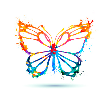 Splash paint butterfly icon on white background