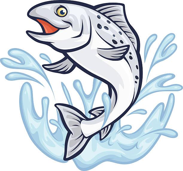 illustrazioni stock, clip art, cartoni animati e icone di tendenza di salmone splashin' - trout
