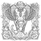 splendid elephant coloring page