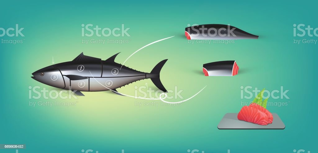 Split up tuna fish and make Sushi vector art illustration