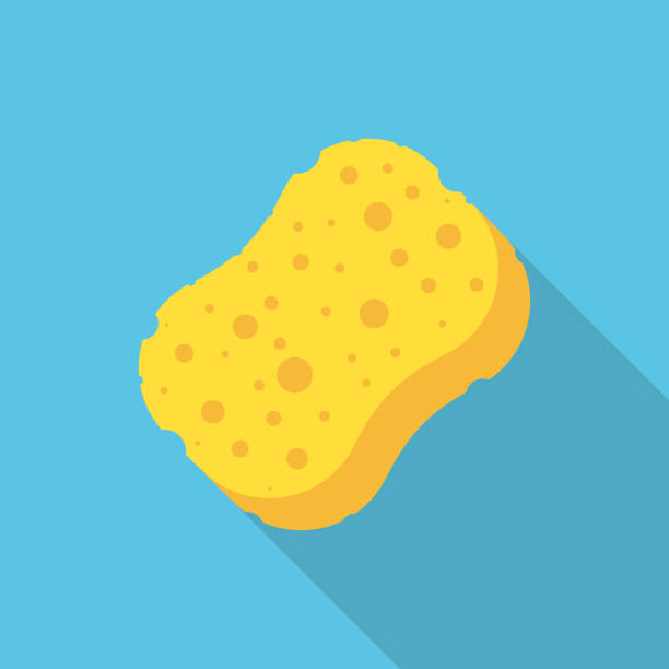 ilustrações de stock, clip art, desenhos animados e ícones de sponge icon isolated on white background. vector illustration. - esponja