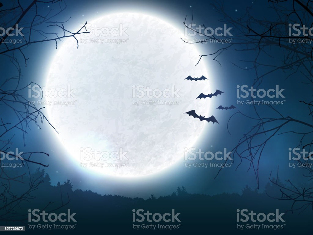 Spooky night background for Halloween banner. vector art illustration