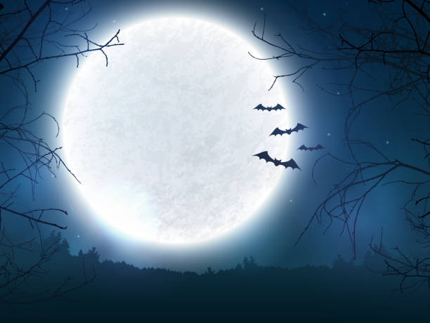 spooky night background for halloween banner. - bat stock illustrations, clip art, cartoons, & icons