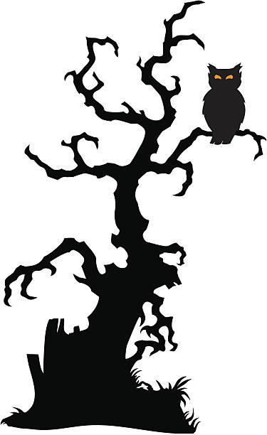 Best Owl Tree Silhouettes Illustrations, Royalty-Free ...
