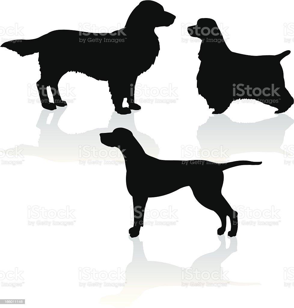 Sport Dogs - Pointer, Golden Retriever, Cocker Spaniel royalty-free stock vector art