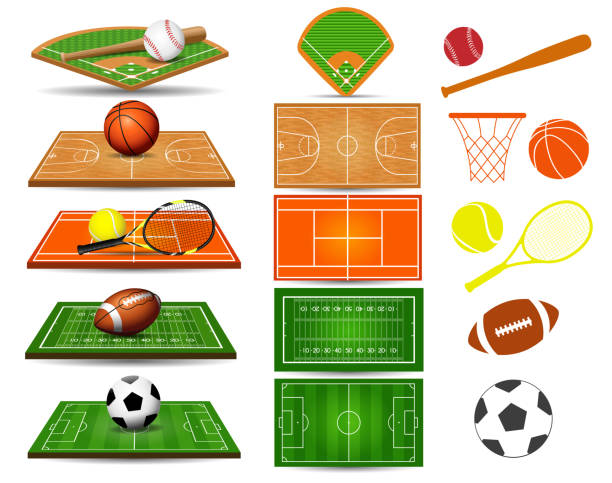 Sport fields, balls and design elements vector art illustration