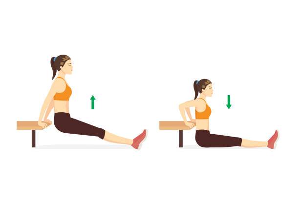 Sport woman doing hip fitness with Bench dip with legs straight in 2 steps. Exercise diagram. vector art illustration