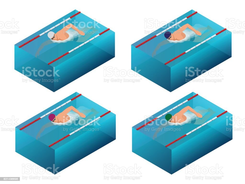 Sportsman swim line race indoor interior infographics. Flat isometric male swimmer vector illustration vector art illustration