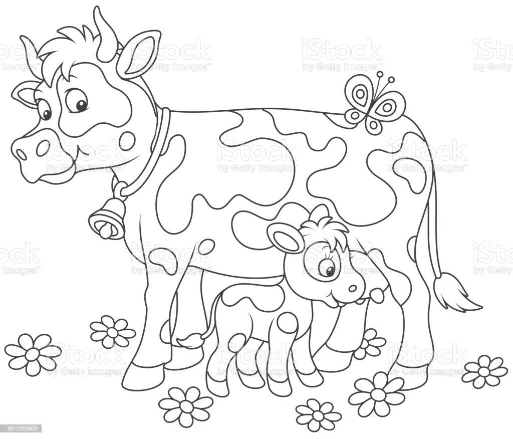 Gefleckte Kuh Ihr Kälbchen Füttern Stock Vektor Art Und Mehr