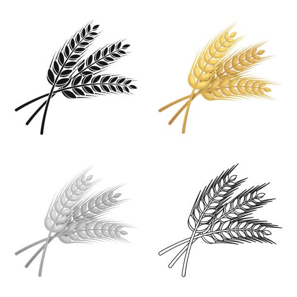 dal buğday. bira için bitki. pub tek kutsal kişilerin resmi içinde karikatür tarzı vektör simge stok çizim web - buğday stock illustrations