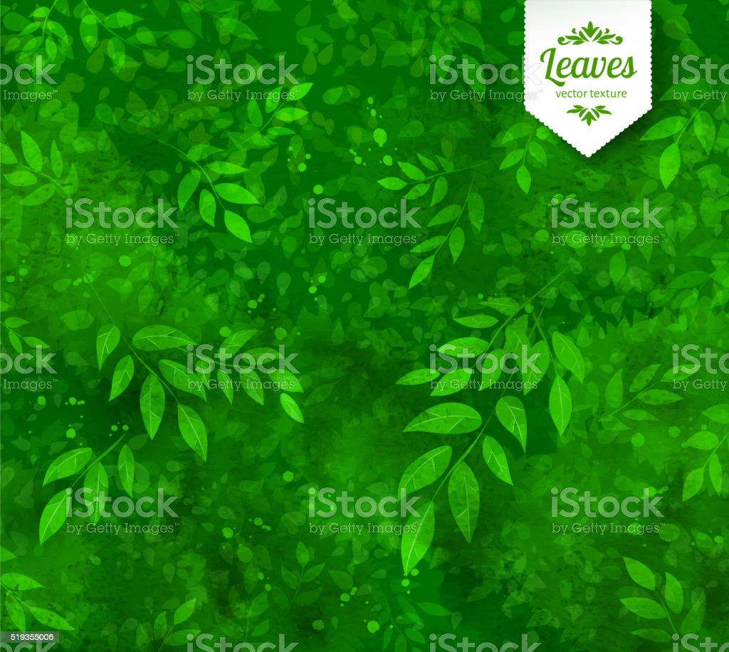 Spring and summer background vector art illustration