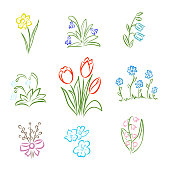 Spring and summer flower collection in doodle style with tulips, narcissus, willow, violet, snowdrop, bell, lily of the valley and cornflowers. Hand drawn colored vector illustration for Easter