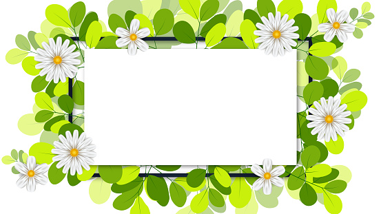 Spring background and green leaves with paper card note