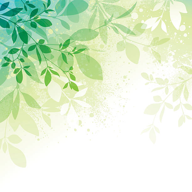 Spring Background Spring background with transparent leaves and watercolor effect textures EPS10 file contains transparencies.  Additional AI9 file with whole shapes and hi res jpeg included. Scroll down to see similar illustrations below. spring stock illustrations