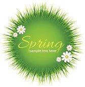 Vector illustration - Spring background