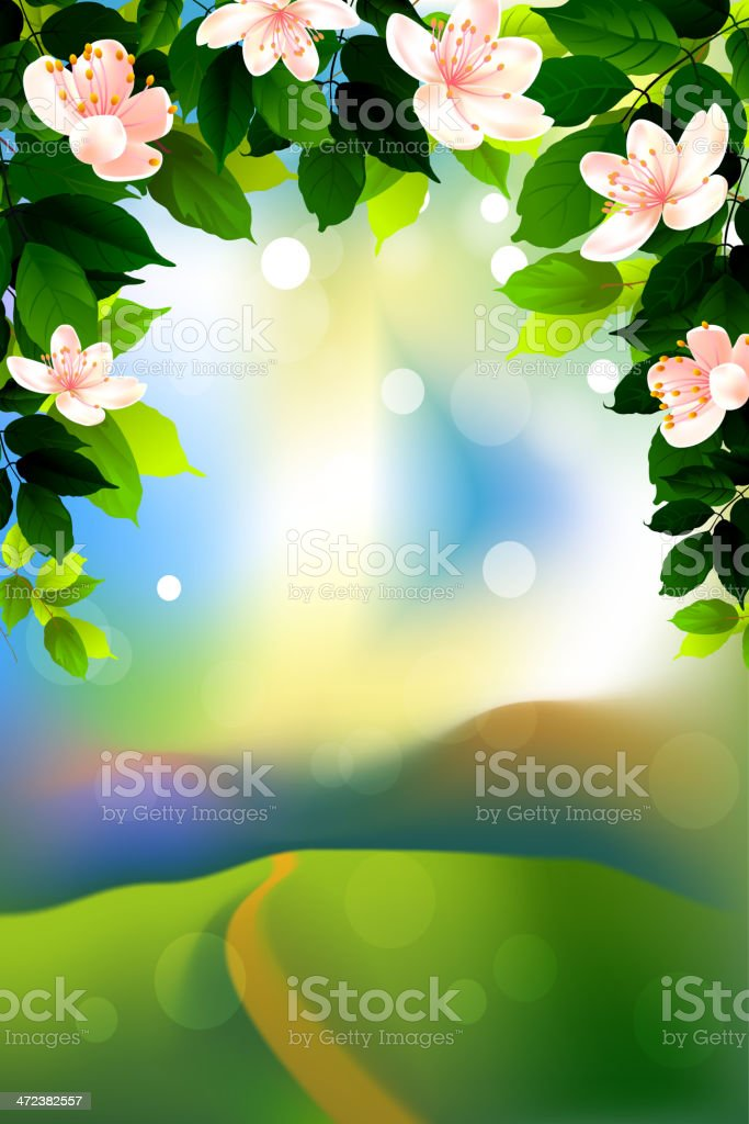 Spring Background royalty-free spring background stock vector art & more images of beauty in nature