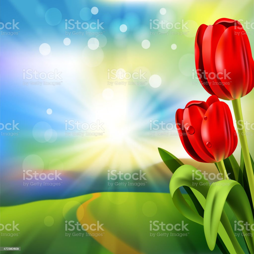 Spring Background royalty-free stock vector art