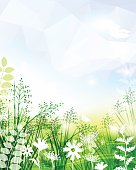 Spring Background. EPS 10.