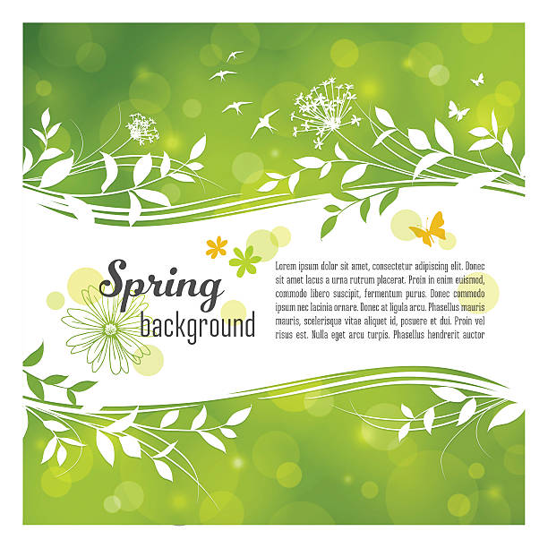 Spring Background with Copyspace Spring banner with leaves, flowers butterflies and birds over a defocused light background. EPS10 file contains transparencies. Global colors used, AI10 and hi res jpeg included. Scroll down to see more of my illustrations. bird borders stock illustrations