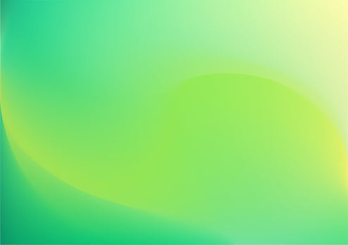 Spring background with gradient and soft green Sunny leaf