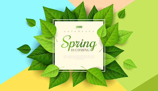 Spring background with green leaves clipart