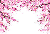 Spring background with flowering tree branches, pink flowers and flying petals on white. Border made with plum blossom. Floral decoration for wedding, Chinese New Year, springtime celebrations.