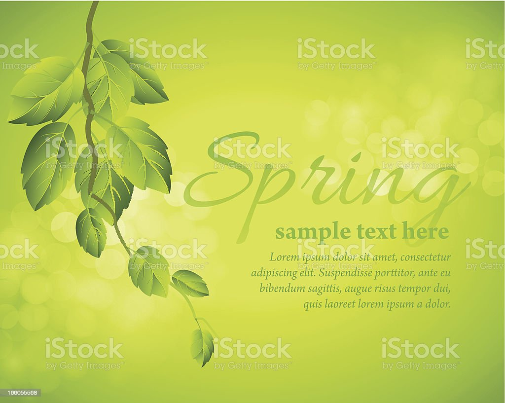 Spring background with tree branch royalty-free stock vector art