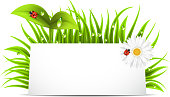 Vector illustration of spring banner with copy space.