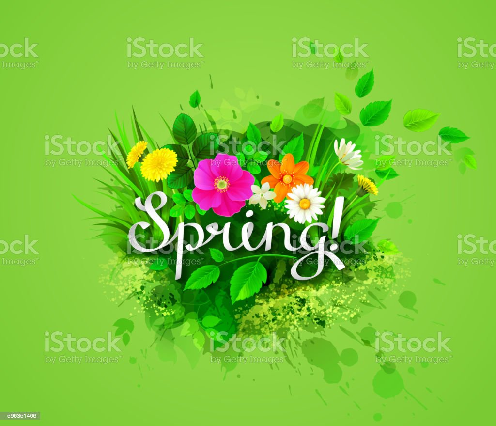 spring banner with flowers royalty-free spring banner with flowers stock vector art & more images of abstract