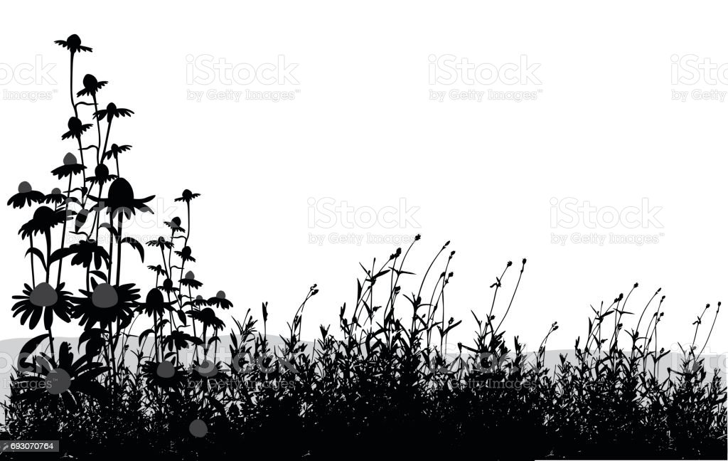 Spring Blooms vector art illustration
