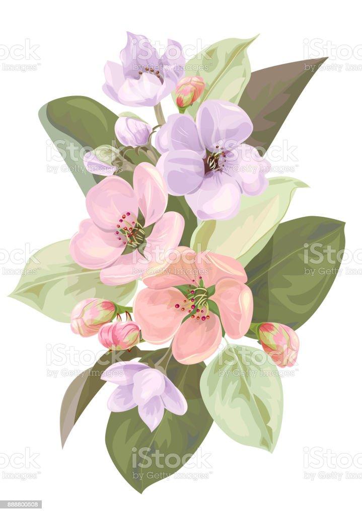 Ilustración de Flor De Primavera Rama Con Flores De árboles De ...