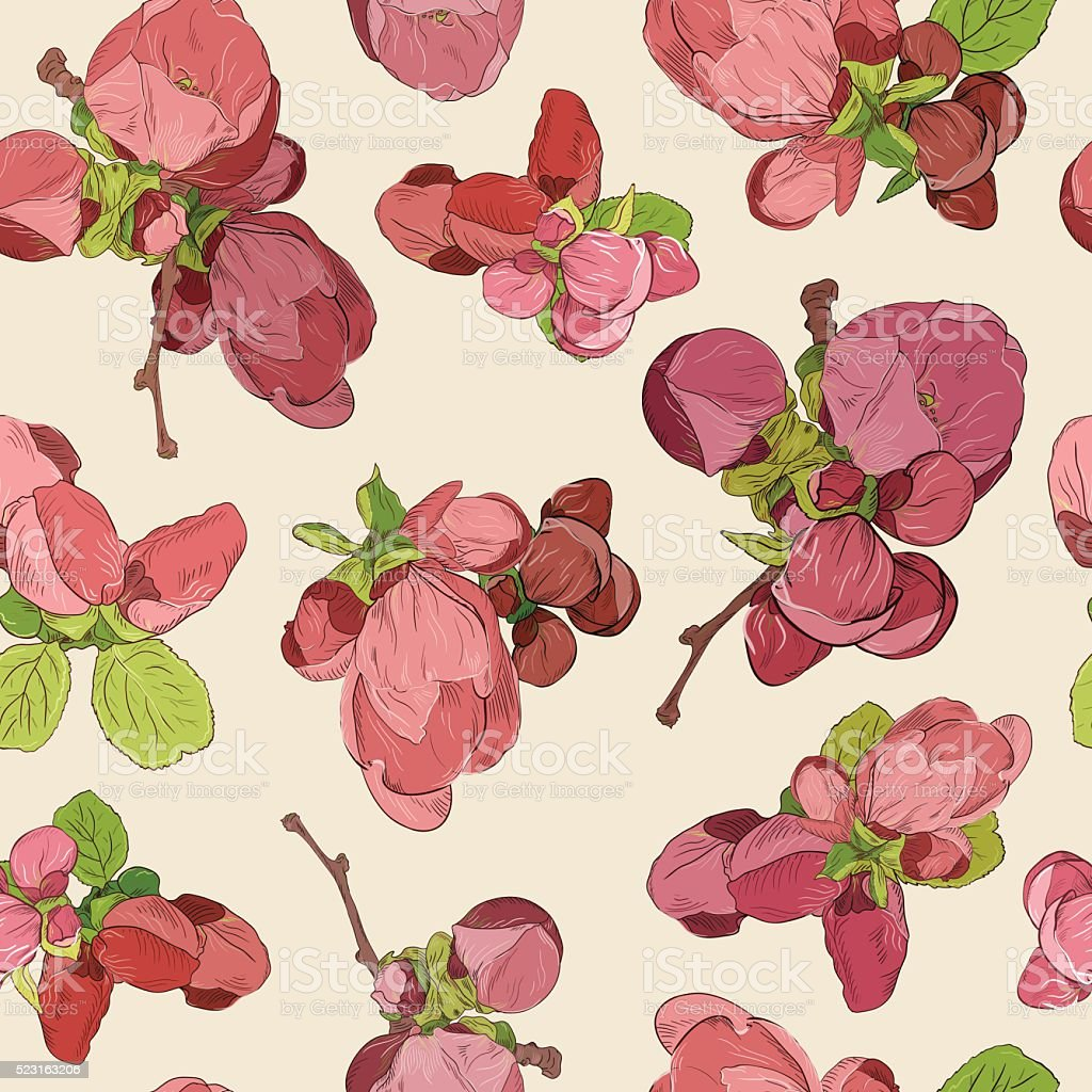 Spring Blossom Pink Flowers Pattern Background Drawn Beautiful Fruit