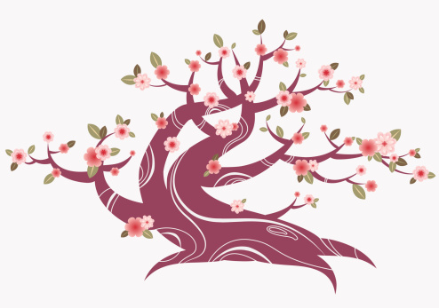 Spring blossom tree in asian style