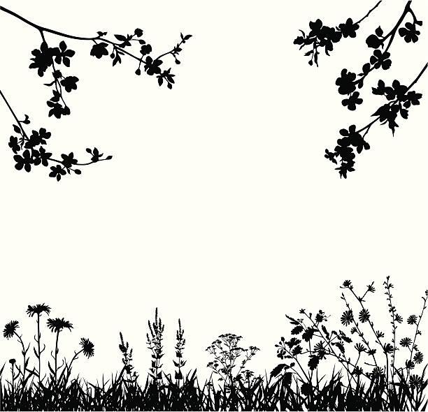 wiosna blossomed garden - gałąź część rośliny stock illustrations
