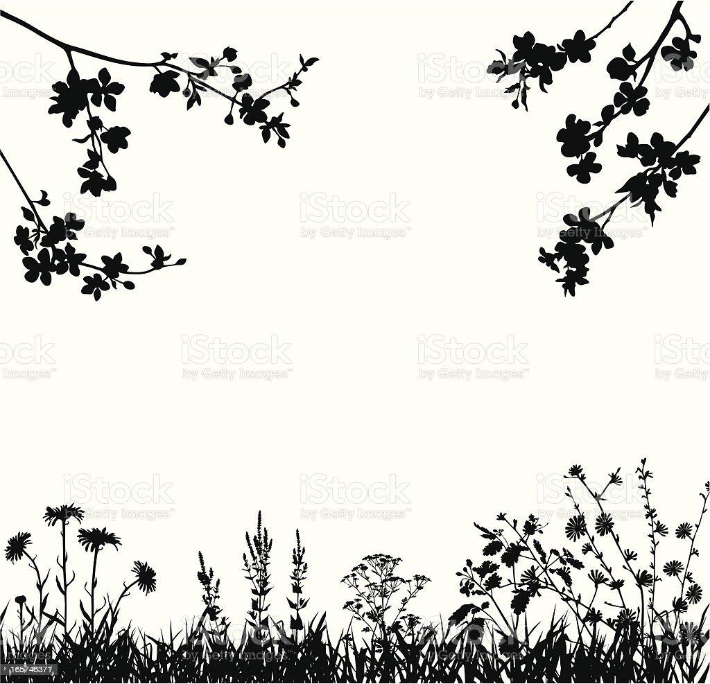 Spring blossomed garden vector art illustration