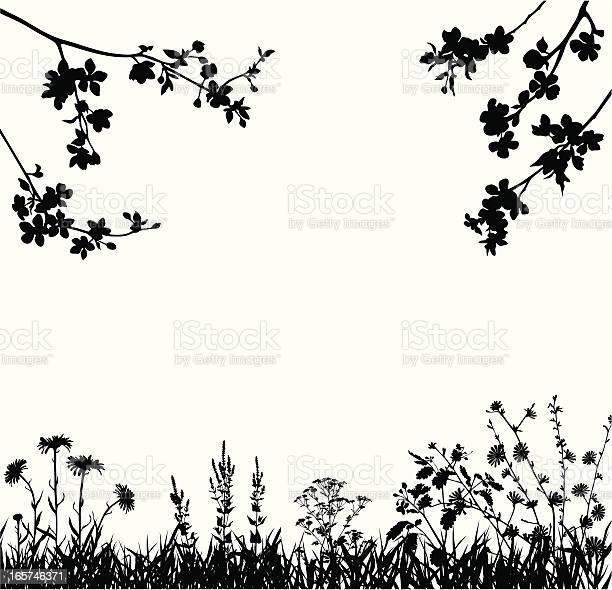 Spring Blossomed Garden Stockvectorkunst en meer beelden van Abrikozenbloesem