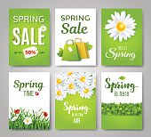 Spring card set with spring quotes, flowers and green grass. Perfect for greeting cards, sale badges, banners, poster, cover, tag, invitation. Vector illustration.