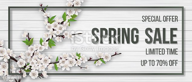 Spring card with chamomiles, blooming branch and grass on wooden background. Spring sale text. Background for invitation, discount offer or flyer. Realistic detailed vector template.