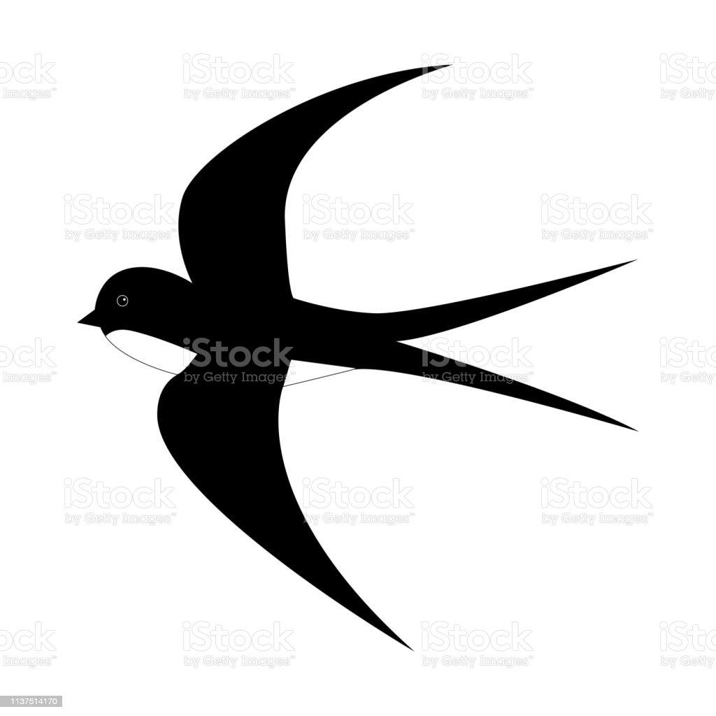 Vetores De Andorinha Preto E Branco Dos Desenhos Animados Da Mola