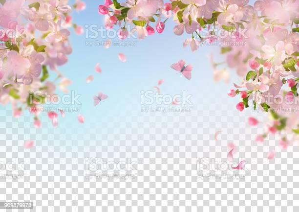 Spring cherry blossom vector id909879978?b=1&k=6&m=909879978&s=612x612&h=nnxeajbj4929fcqaocct6cc lyzxo6wtv3pyts1vxjw=